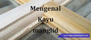 mengenal kayu Menglid dan kekurangan kelebihannya