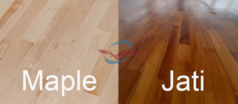 Perbandingan antara Maple dengan jati